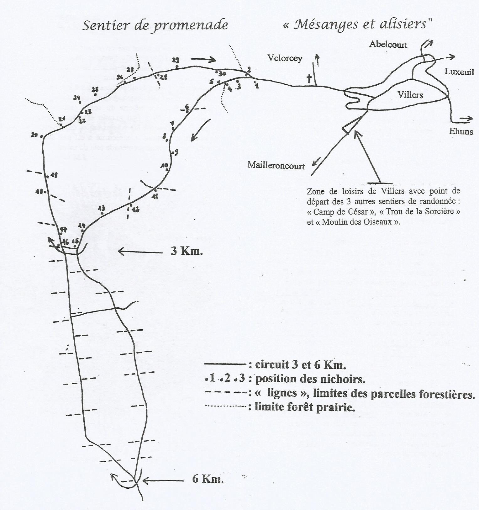https://www.villers-les-luxeuil.com/projets/villers/files/images/0_Base_LVC/Randonnees/Randonnee_Mesanges_Alisiers_Plan.jpg