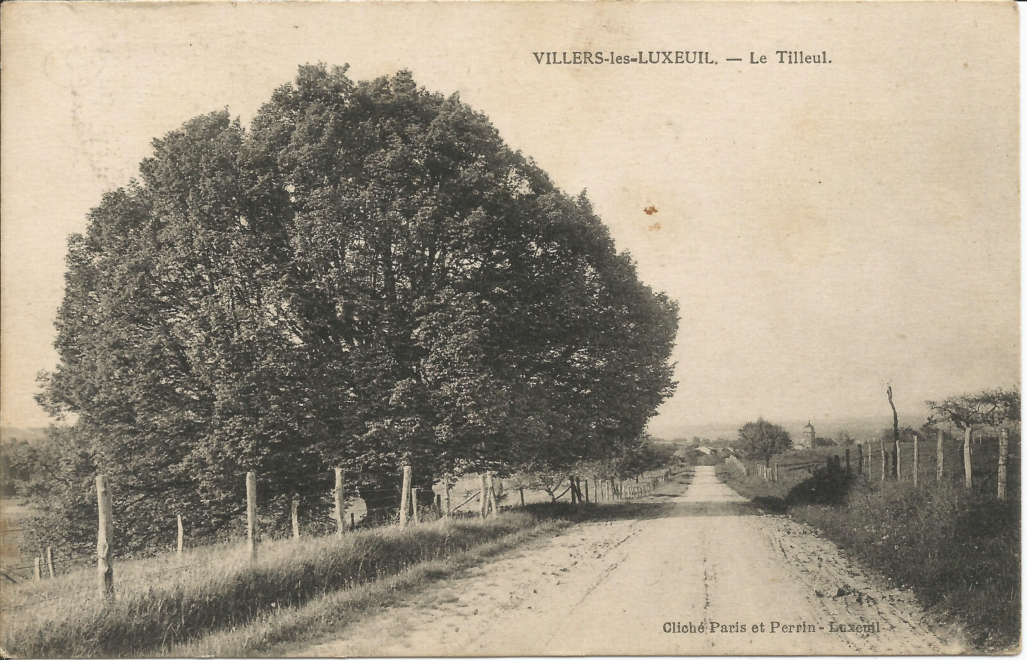 https://www.villers-les-luxeuil.com/projets/villers/files/images/Cartes_postales/Tilleul_2015/Le_Tilleul_5.jpg